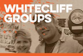 1-groups